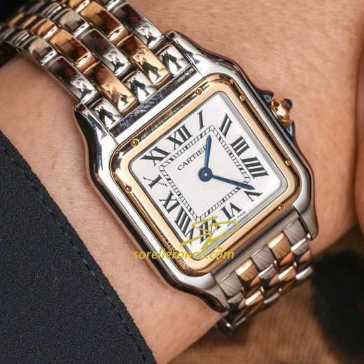 https://www.sorelleronco.it/Occasioni/schede_orologi/Cartier/wcr2335-CARTIER-PANTHERE-Acciaio-Oro/W2PN0007-zoom.jpg